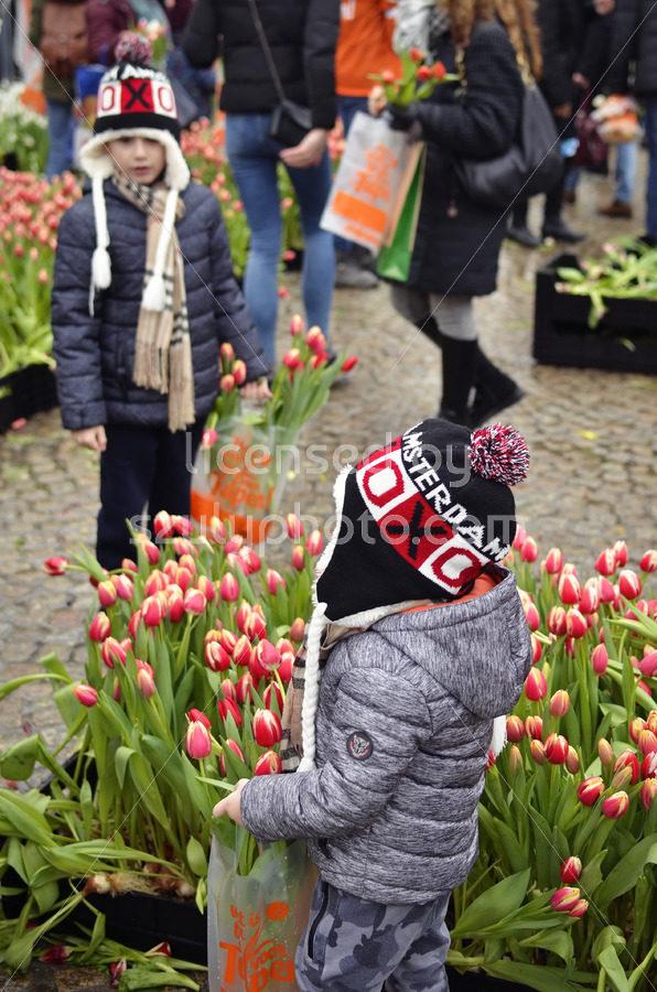 Children on the National Tulip Day - Adam Szuly Photography