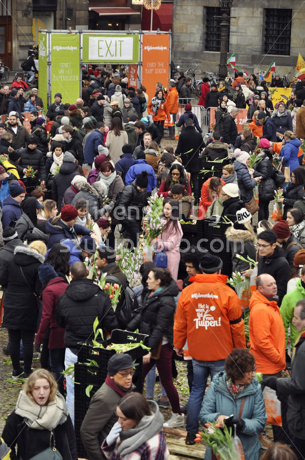 Crowd and organisers at the National Tulip Day - Adam Szuly Photography