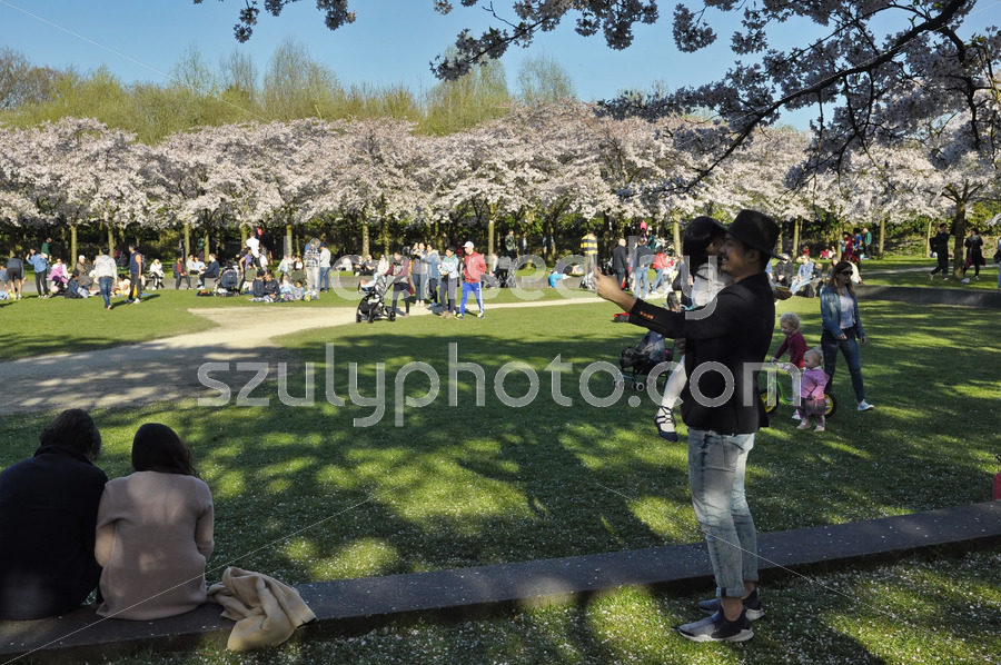 Father and child in the Japanese cherry garden - Adam Szuly Photography