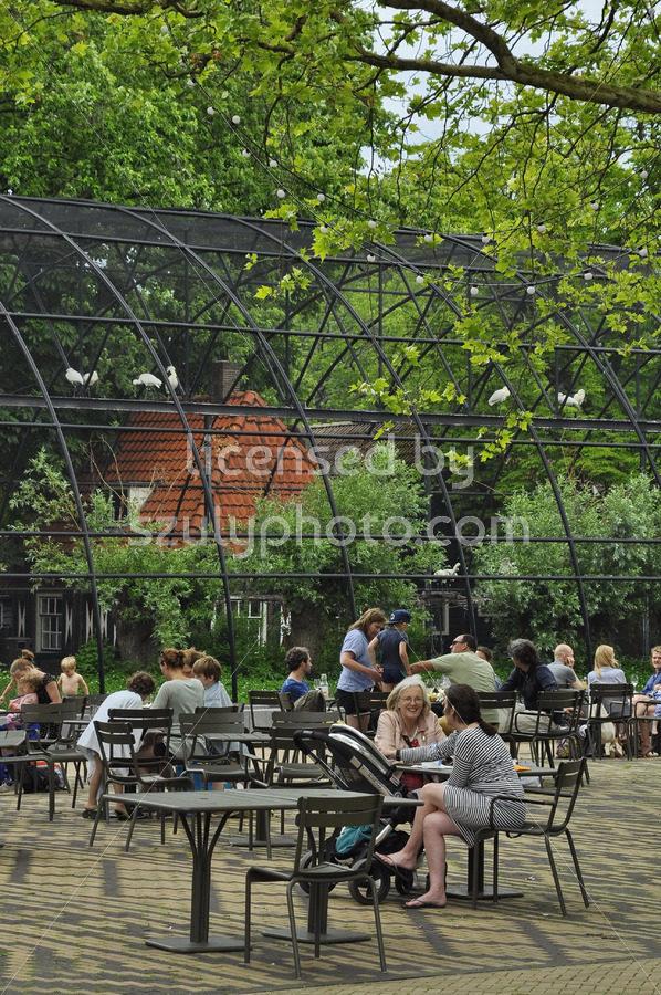 The public garden of the Artis Zoo - Adam Szuly Photography