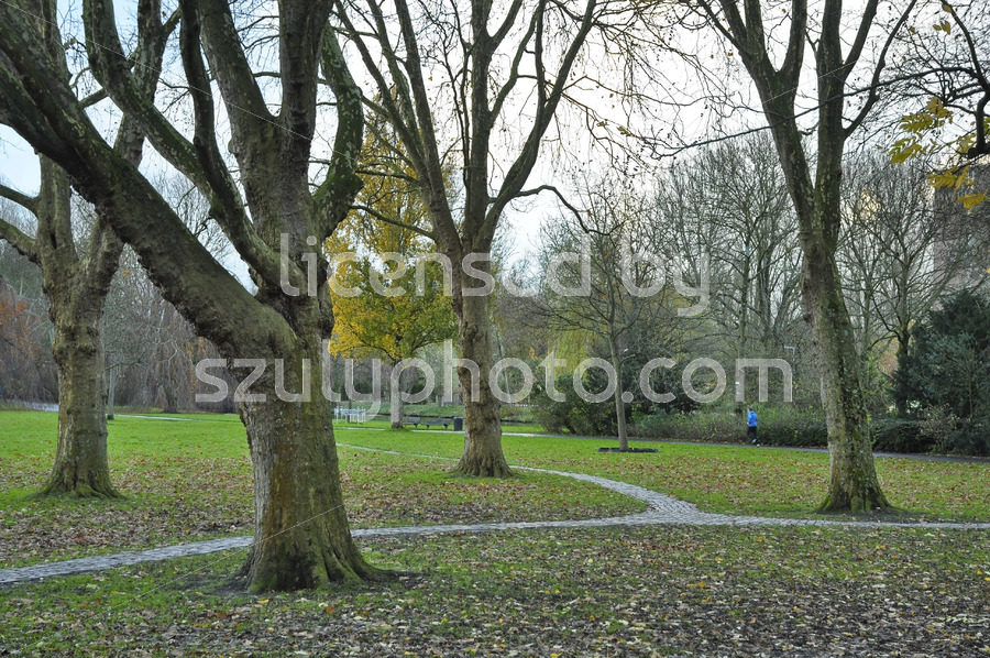 Autumn in the Beatrixpark - Adam Szuly Photography