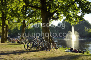 Late summer Vondelpark - Adam Szuly Photography