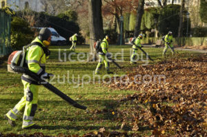 Leaf blowers group view - Adam Szuly Photography