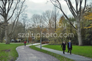 Path in the Beatrixpark in Amsterdam - Adam Szuly Photography