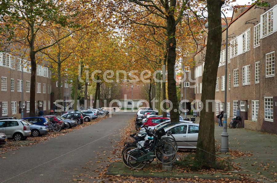 Street view in the Nieuwe Pijp - Adam Szuly Photography
