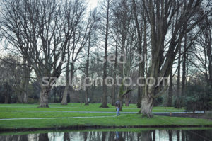 The Beatrixpark in the Zuidas - Adam Szuly Photography