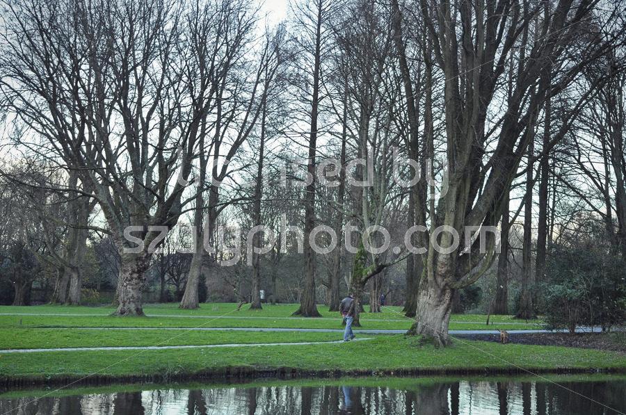 The Beatrixpark in the Zuidas - Adam Szuly Photography