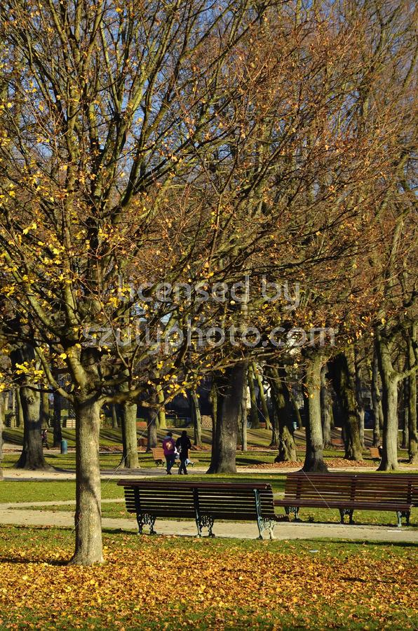 The Cinquantenaire Park - Adam Szuly Photography