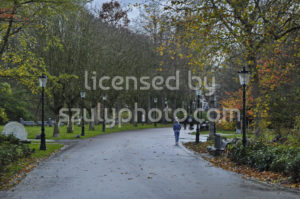 View of a walking path in the Oosterpark - Adam Szuly Photography