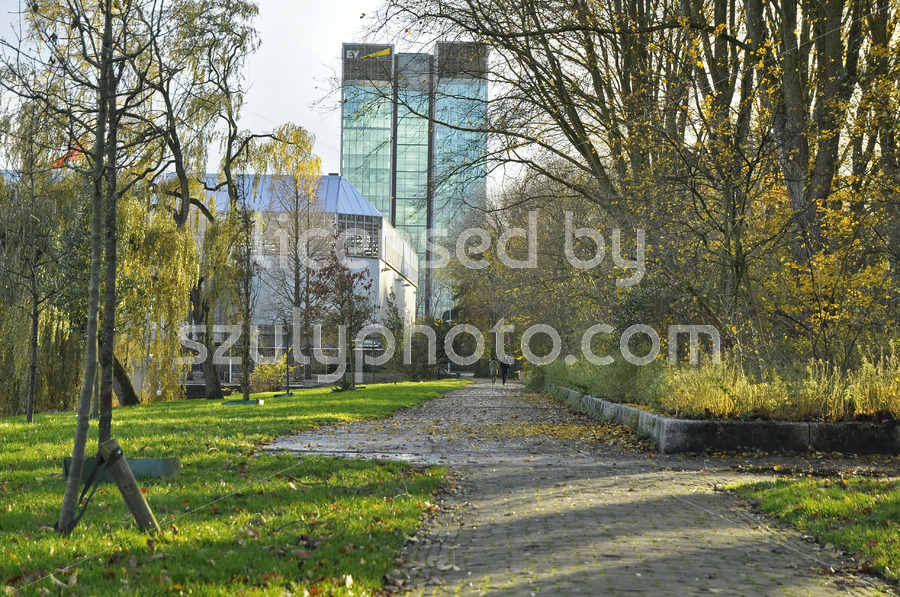 Walking path in the Beatrixpark - Adam Szuly Photography